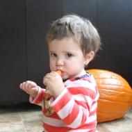 Audrey stole my carrots!
